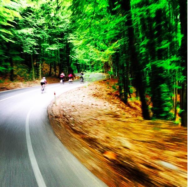 Belgrad Ormanında Bisiklet