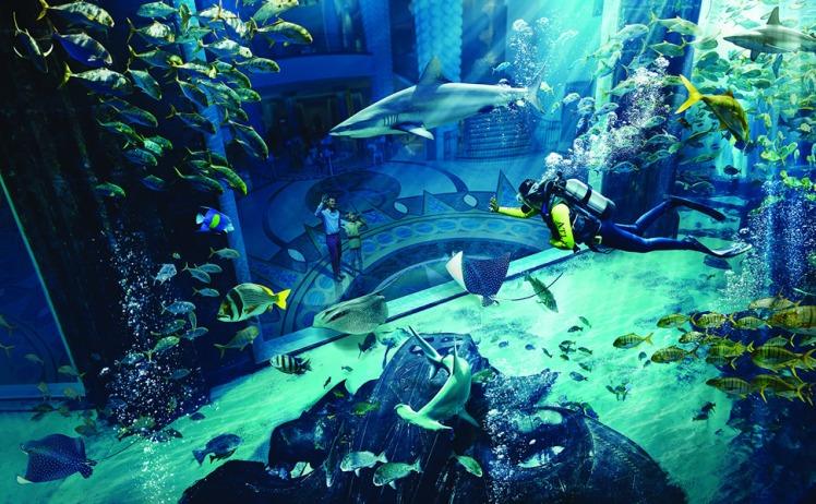 atlantis-palm-dive-marine_and_waterpark_ambassador_lagoon