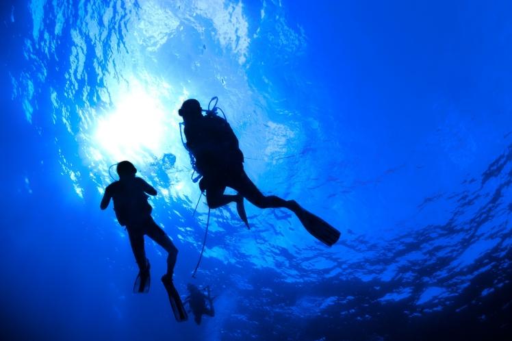 divers-1